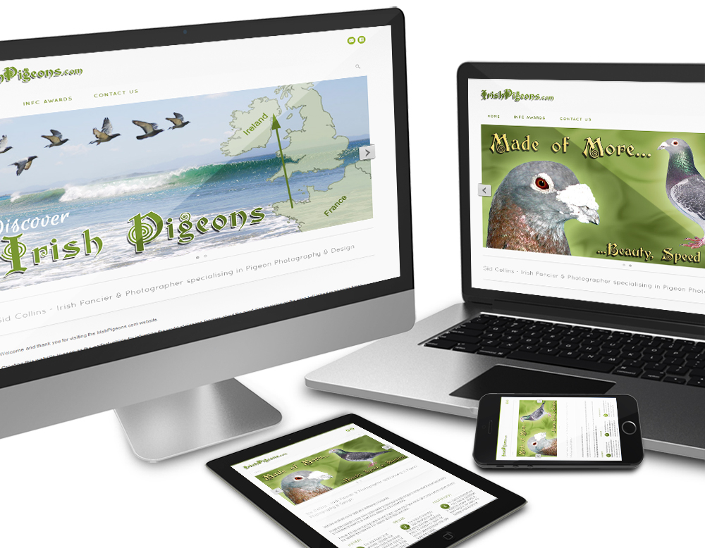 CMS responsive website of Irish Pigeons