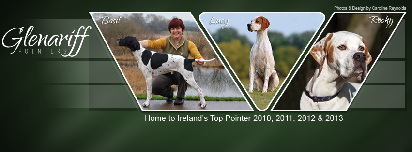 Facebook Timeline Cover image for Wendy Fleming's Glenariff Pointers