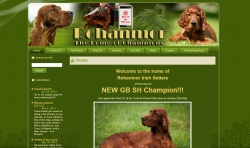 Website of Rohanmor Irish Setters