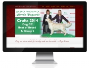 CMS website for Abinvale Golden Retrievers