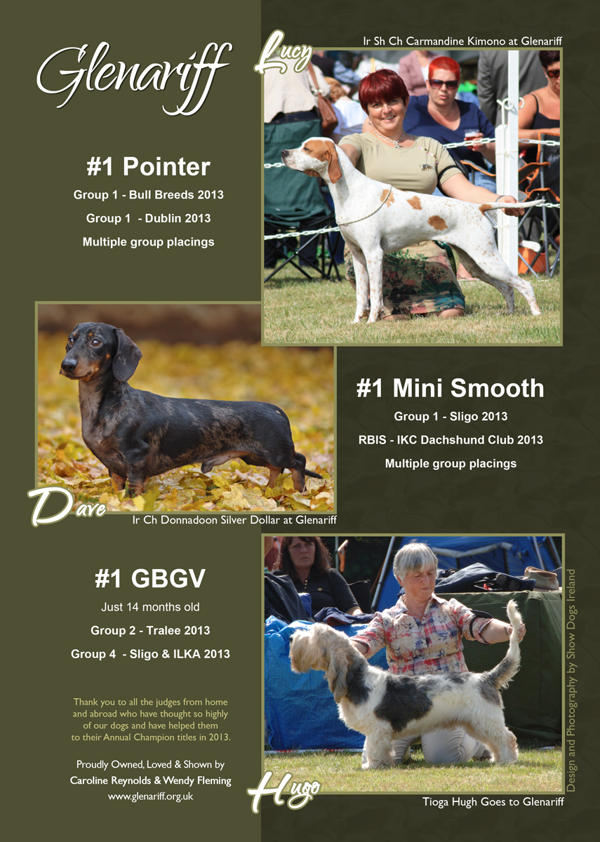 Advert for Glenariff - Show Dogs Ireland March 2014